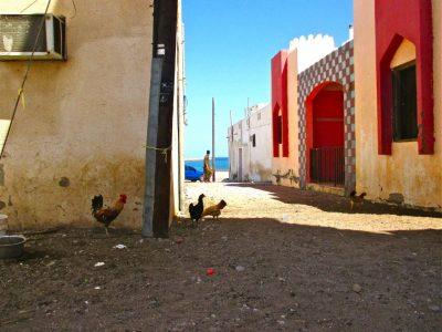 rue qurrayat