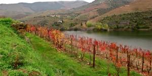 Un road trip dans la vallée du Douro