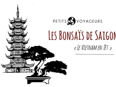 bonsais de saigon