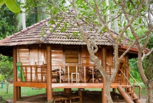 Palm Paradise Cabana