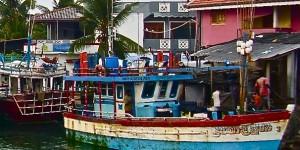 lagune de negombo portrait