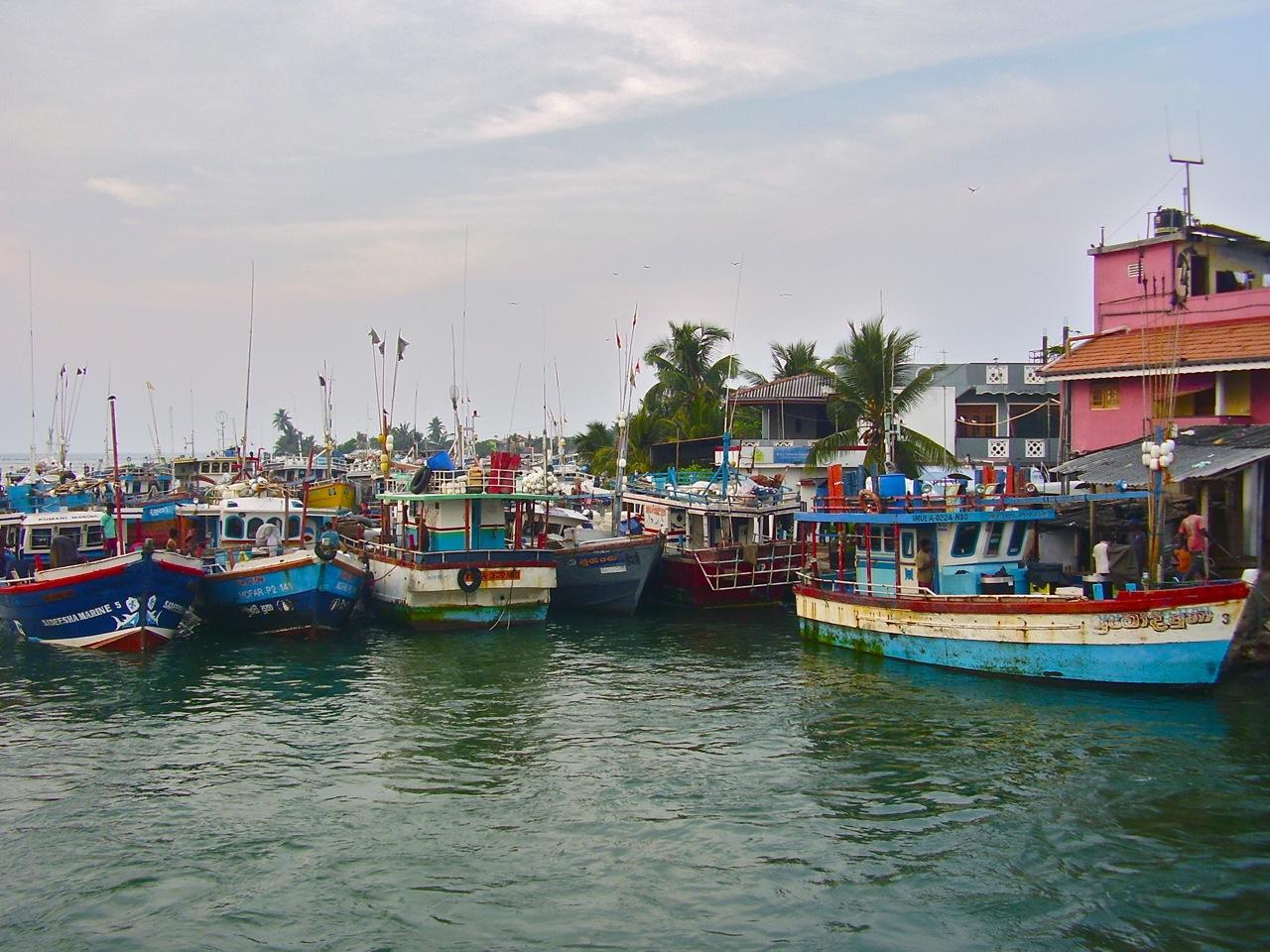 lagune de negombo