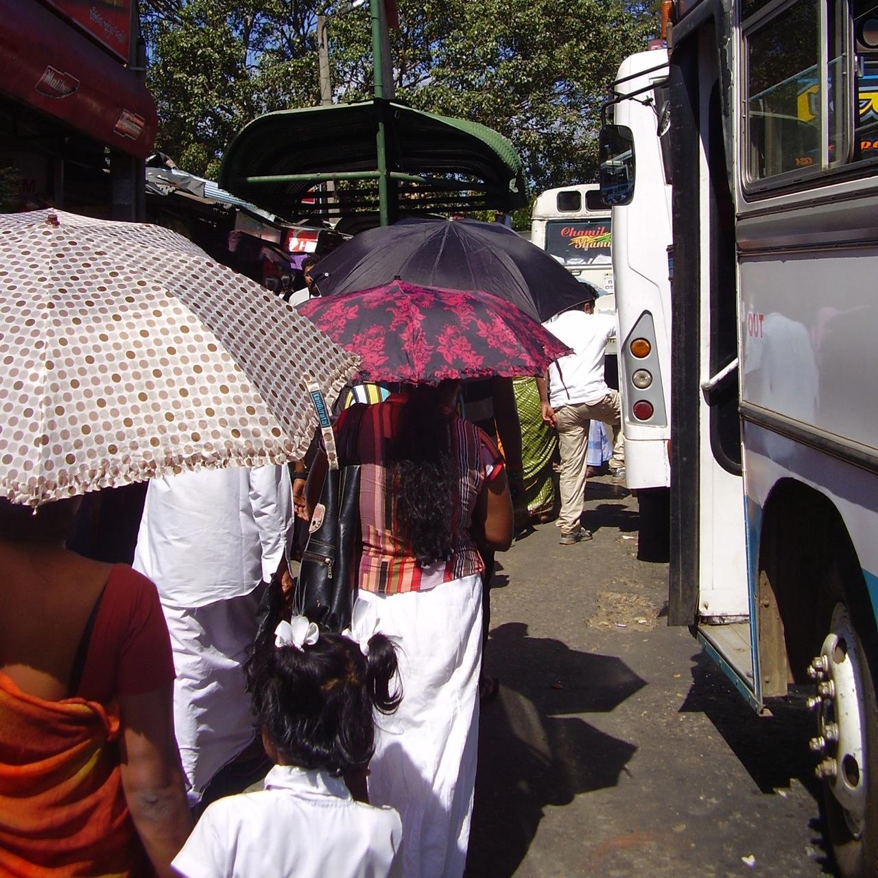 parapluie kandy