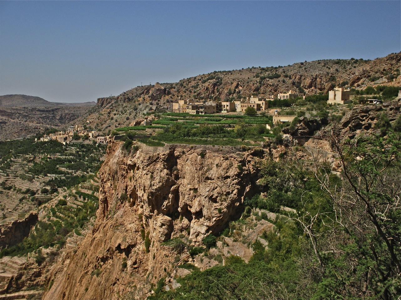 Cultures en terasses dans les montagnes d'Oman.