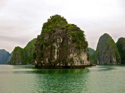 Un piton sur la baie d'halong