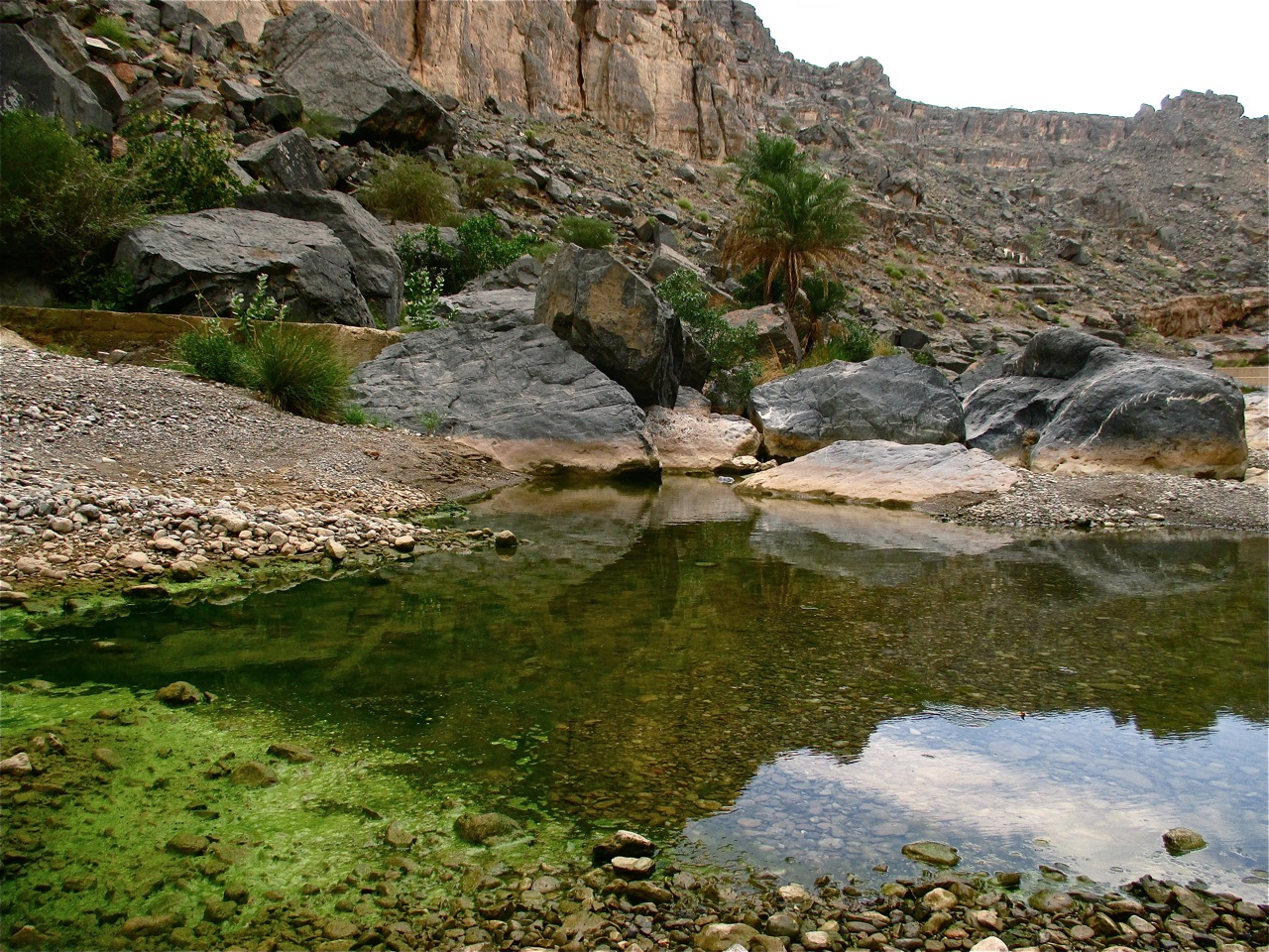 Escapades autour de Nizwa jusqu'au wadi Damm.