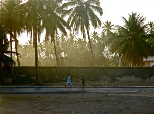 Salalah Express : le Dhofar en 3 jours