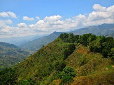 Parcs nationaux du Costa Rica : le Chirippo