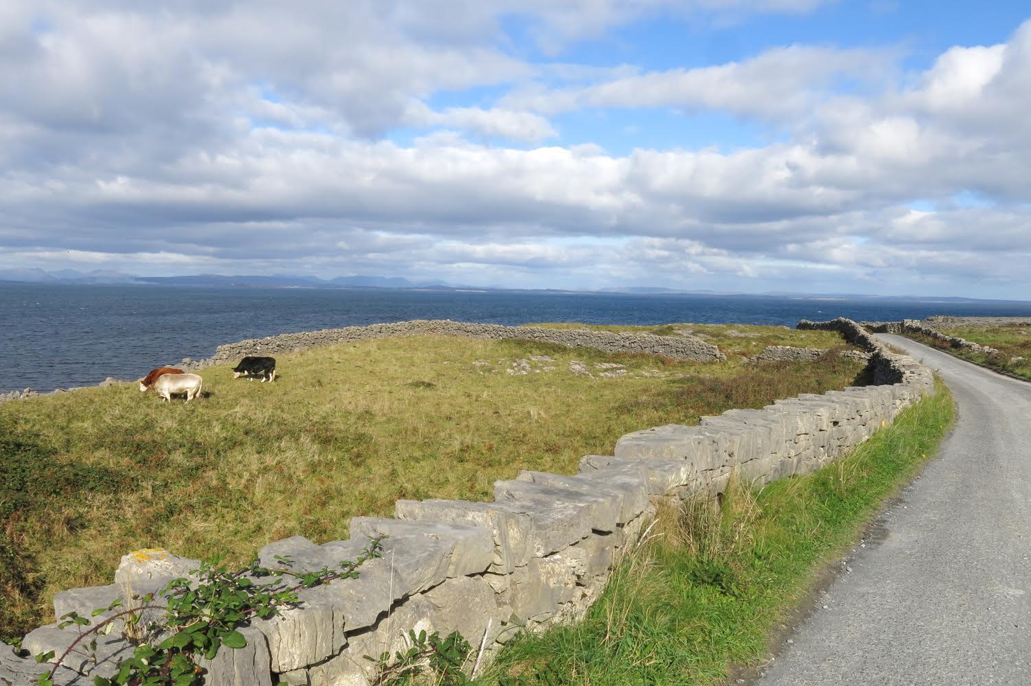 Voyage dans les îles d'Aran en Irlande