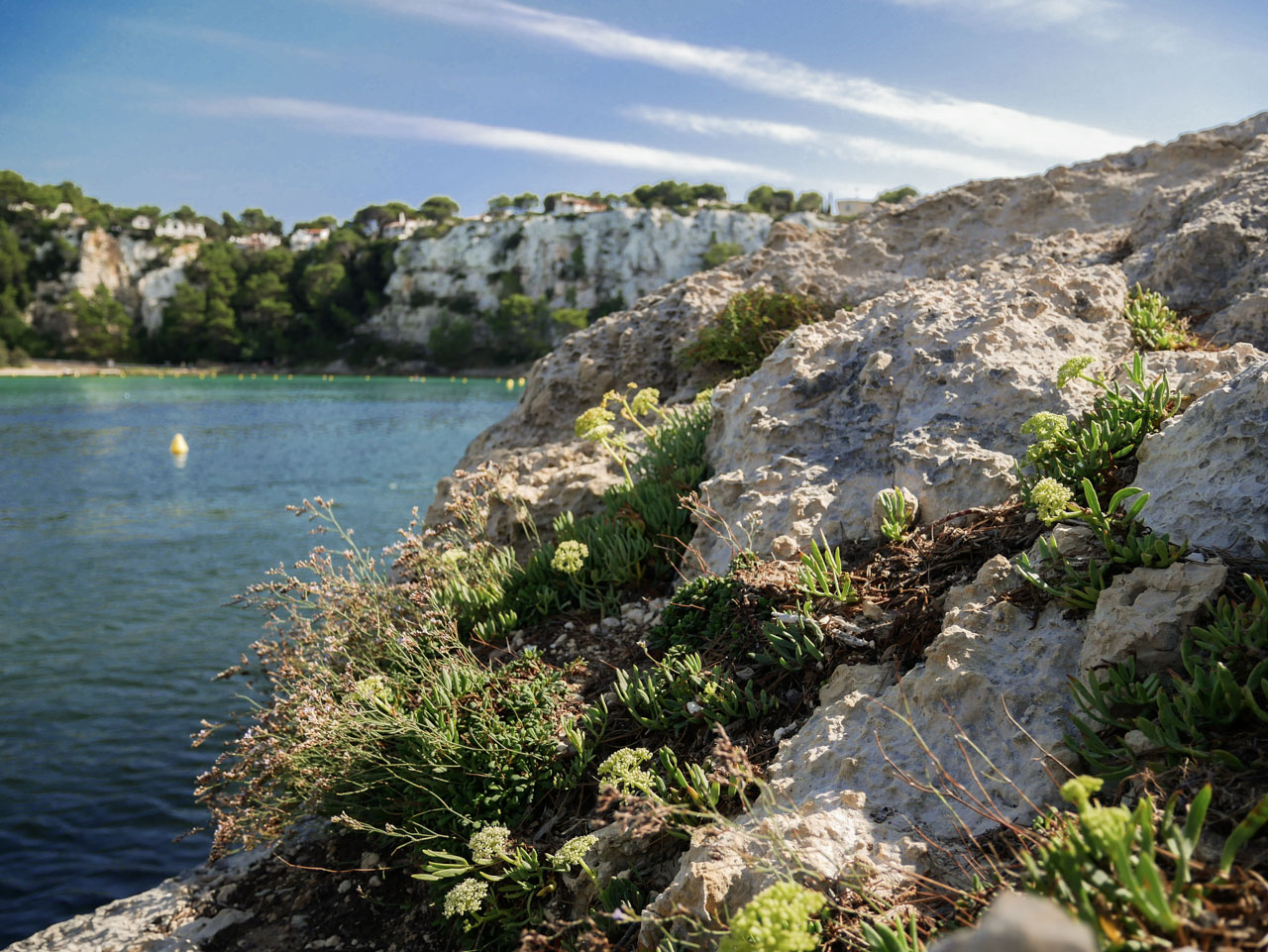 Les criques et les plages de Minorque