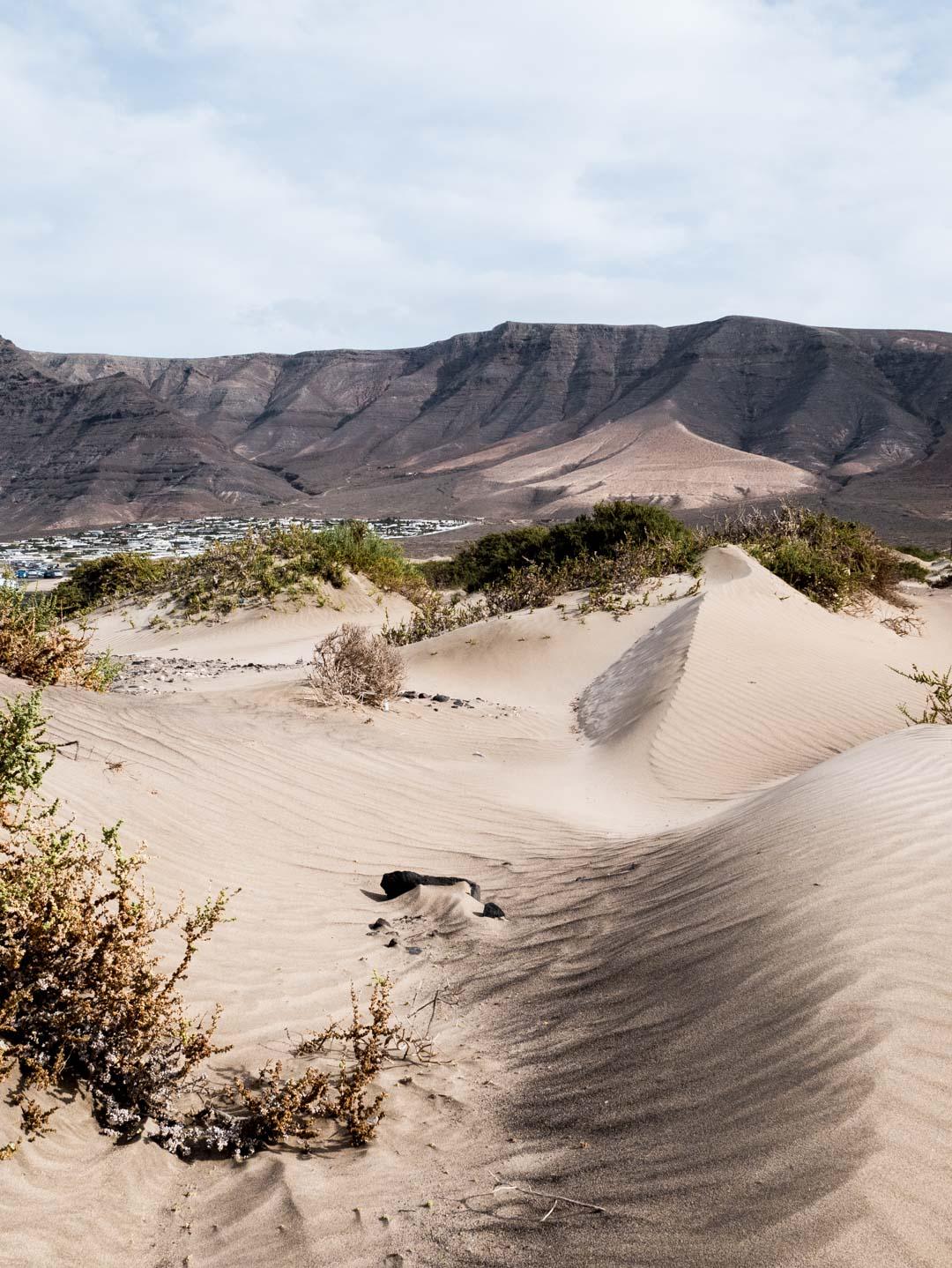 Incontournable d'un voyage à Lanzarote : Famara