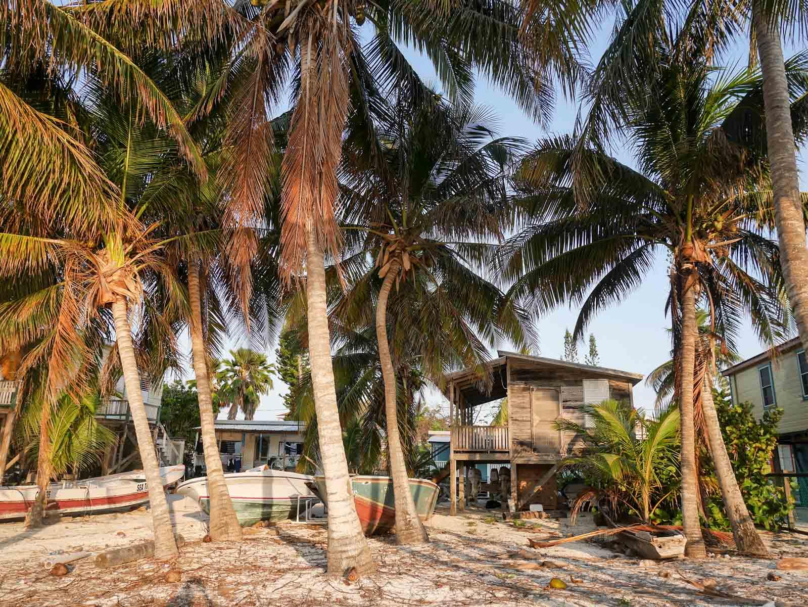 Littoral du Belize : les cayes de la caraïbe