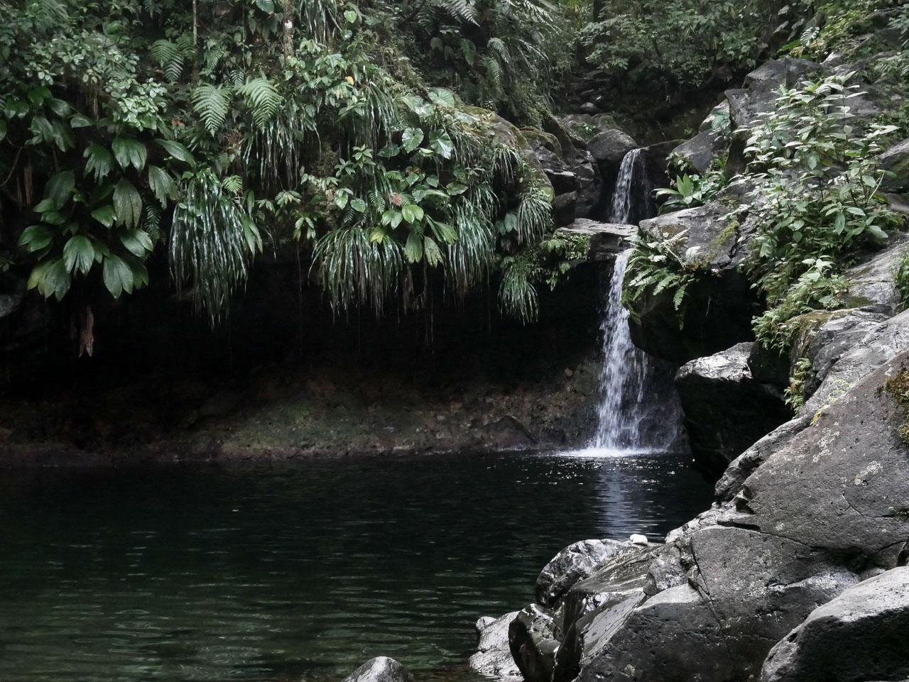 Balade dans le parc national de Guadeloupe