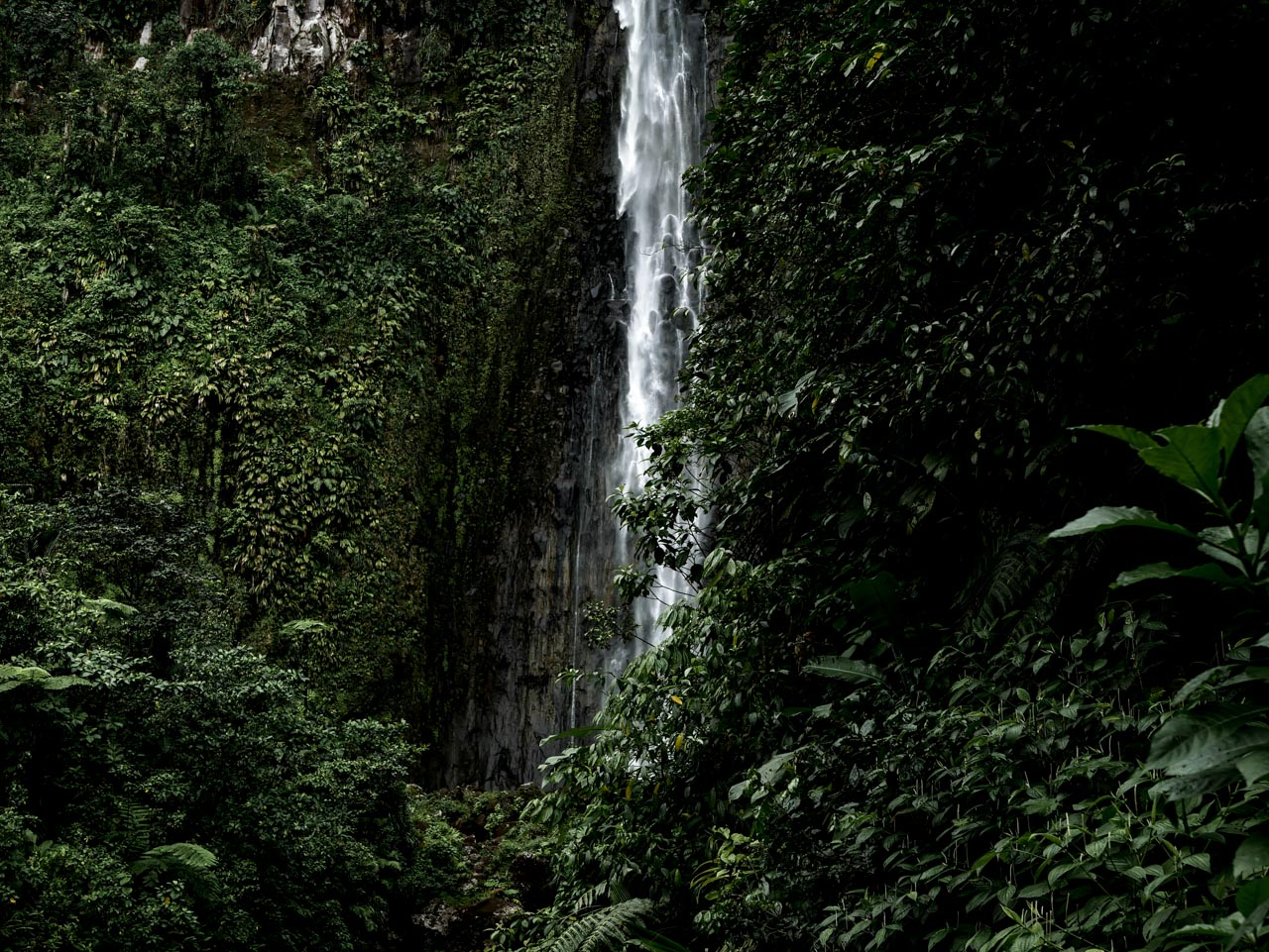 Faire de la randonnée en Guadeloupe