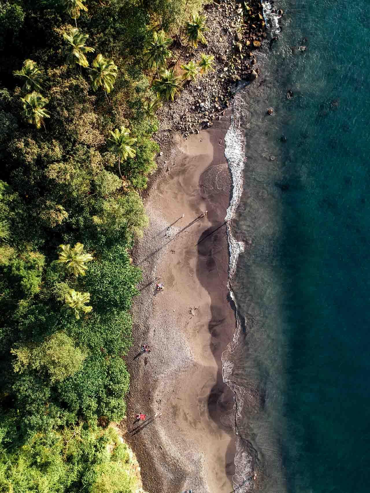 Anse Couleuvre : la plus belle plage de Martinique