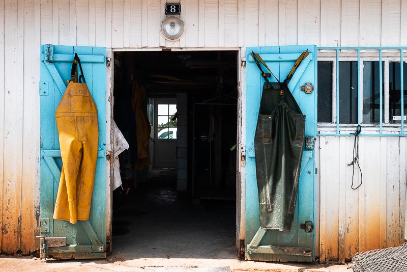 Dégustation d'huîtres à Arcachon