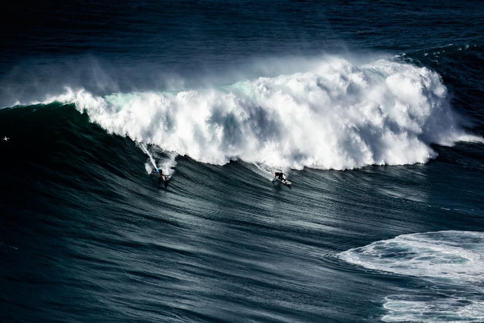Surf de gros sur les côtes portugaises