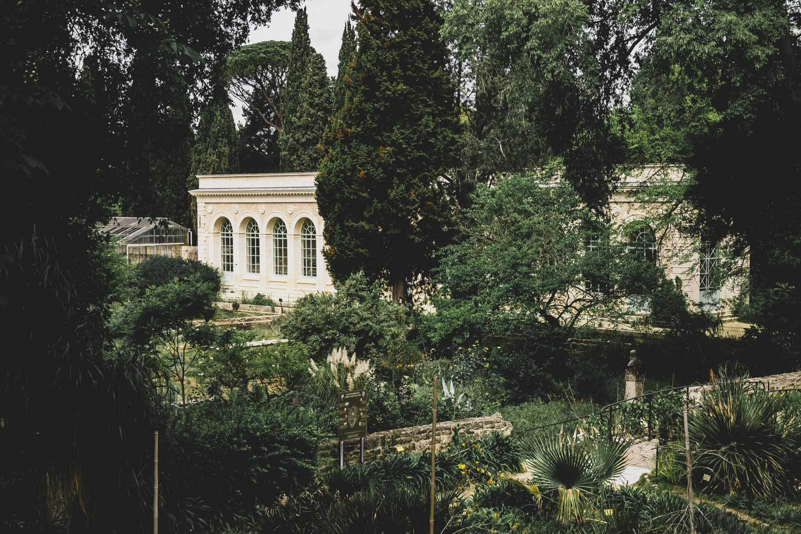 jardin-plantes-montpellier-france