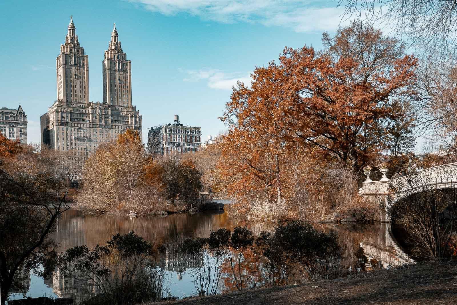 Le célèbre pont de Central Park